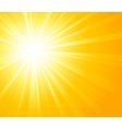 Orange summer sun light burst vector image