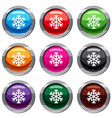 snowflake set 9 collection vector image vector image