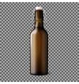 Blank transparent brown realistic beer bottle vector image