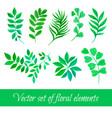 set of floral collection with leaves vector image