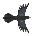 beautiful magpie icon flat style vector image