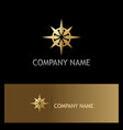 gold north star compass logo vector image vector image