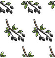 olive branch greece symbol seamless pattern greek vector image vector image