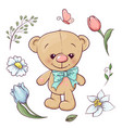 set teddy bear and flowers hand drawing vector image