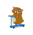 Brown Bear On Scooter vector image