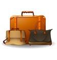 Luggage vector image