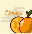 orange whole and slice fruit delicious shiny vector image