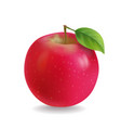 red apple with leaf realistic vector image vector image
