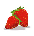 strawberry nutrition healthy image vector image vector image