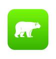 wild bear icon digital green vector image