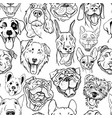 pattern with muzzles of dogs of different breed vector image