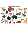 animals north america vector image