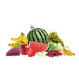 assorted fruits 01 vector image vector image