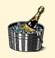 bottle champagne in a bucket with ice vector image