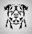 Dog Face Abstract vector image vector image