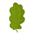 green oak leaf icon cartoon style vector image vector image