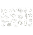 outlines of fish and other sea creatures vector image vector image