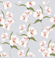 pattern with alstroemeria lily flowers branch vector image