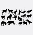 tiger and lion wild animal silhouette vector image vector image