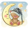 Cute Sleeping Bear vector image
