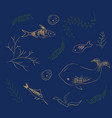 hand drawn marine life vector image