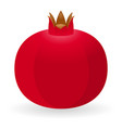 pomegranate isolated vector image