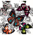seamless wallpaper pattern butterlies and roses vector image