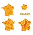 Set of map icons of France with honey cells vector image vector image