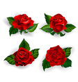 Set of Red Roses vector image vector image