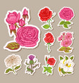 set wedding botanical flowers in garden or vector image vector image