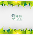 template header or footer green leaves nature vector image vector image