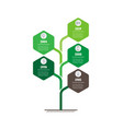 vertical timeline infographics tree with leafs vector image vector image