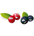 Blueberry and Cranberry cartoon vector image