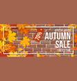 autumn sale fallen maple leaves frame red brick vector image vector image