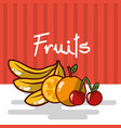 banana orange cherry fruits fresh juicy collage vector image