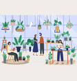 botanist greenhouse planting houseplant grow vector image