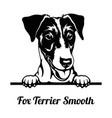 peeking dog - fox terrier smooth breed - head vector image vector image