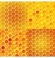 Seamless pattern with honey cells combs vector | Price: 1 Credit (USD $1)