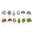 set of hand drawn trees on the white background vector image vector image