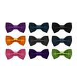 bow tie collection bowtie necktie symbol or icon vector image