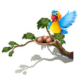 A bird watching the nest vector image vector image