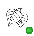 birch leaves line icon simple elegant style two vector image
