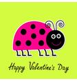 cartoon pink lady bug Happy Valentines Day vector image vector image