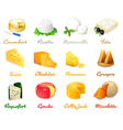 Cheese icons vector image