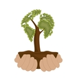 environmental icon hands holds tree design icon vector image