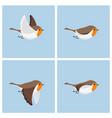 flying robin animation sprite sheet vector image vector image
