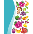 Fresh juicy fruits on white backgrou vector image