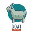 goat fresh meat promotional emblem with domestic vector image vector image