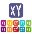 human chromosomes icons set flat vector image vector image
