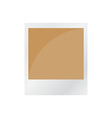 pola brown vector image vector image